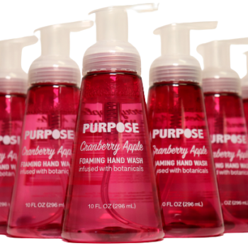 10 Oz Cranberry Apple - Purpose Antibacterial Foaming Hand Soap